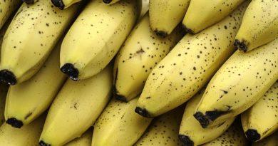 Banany - właściwości lecznicze i zdrowotne